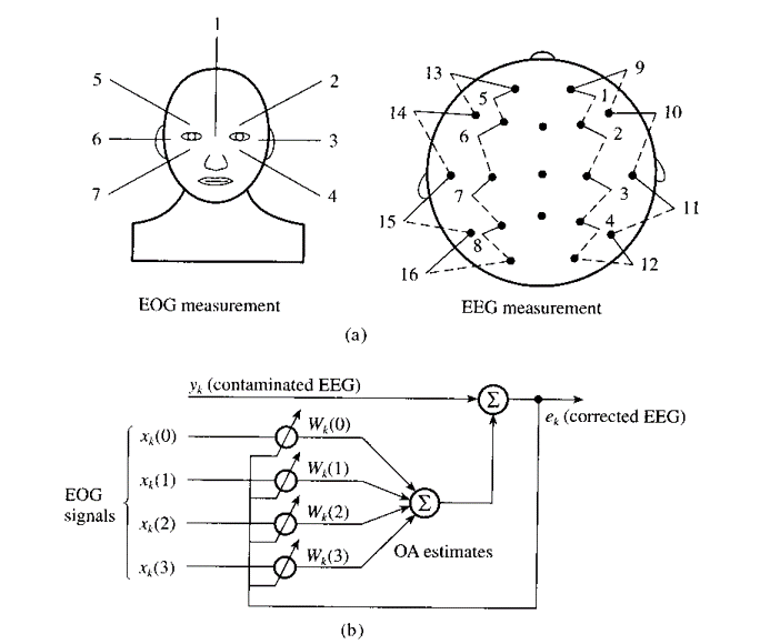EOG and EEG Scans